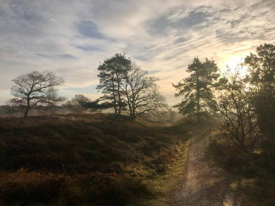 Reason to be cheerful: Denmark gets a new national parktoday